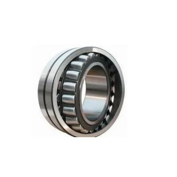 45 mm x 100 mm x 25 mm  NSK NF 309 cylindrical roller bearings
